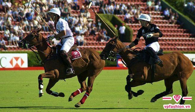 Áo Polo gắn liền với môn thể thao Mã cầu